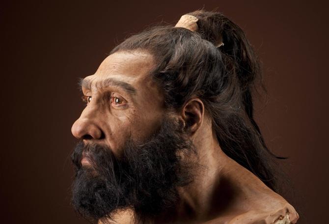 Reconstitution Néandertal