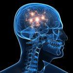 Le manque de sommeil cause d'importants dégâts dans le cerveau