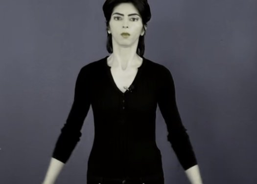 Nasim Aghdam attaque youtube